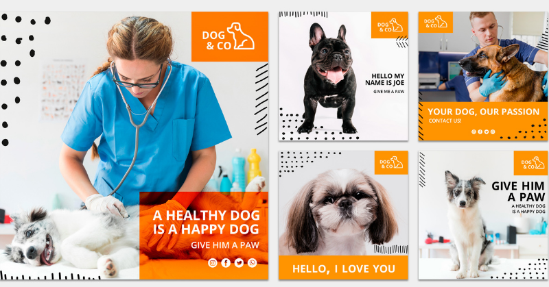 marketing veterinarios